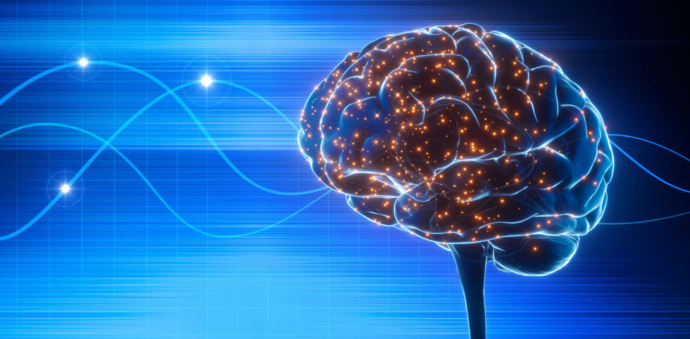 The new study also found evidence of phase precession outside of spatial tasks, lending some weight to the idea it may be a more general process in learning throughout the brain.