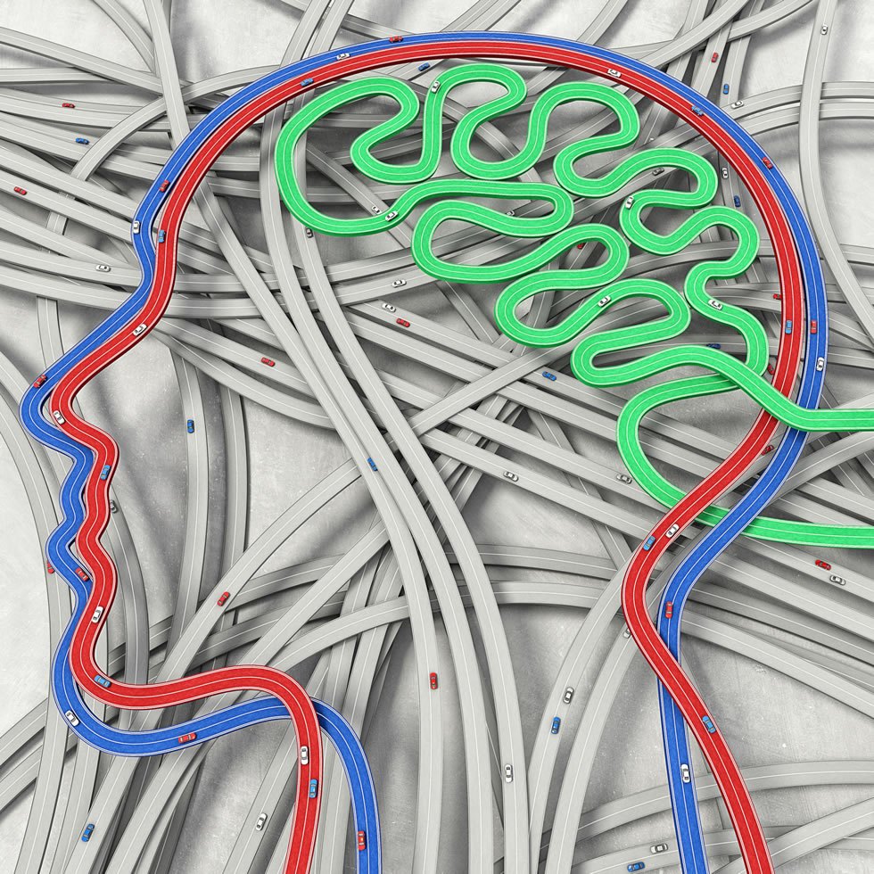 Subway Map Of The Brain.There S A Map For That Tracing Pathways Through The Ever Changing Brain