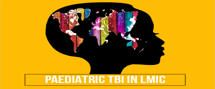 Global Survey of Management of Severe Paediatric Traumatic Brain Injury (TBI) in LMIC