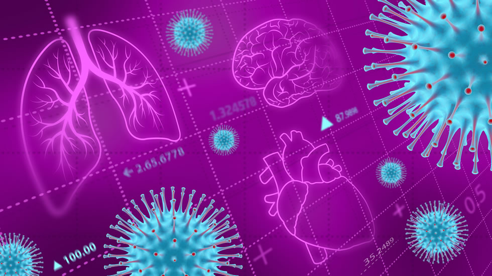 Since the pandemic hit, researchers have been uncovering ways COVID-19 impacts other parts of the body, besides the lungs.