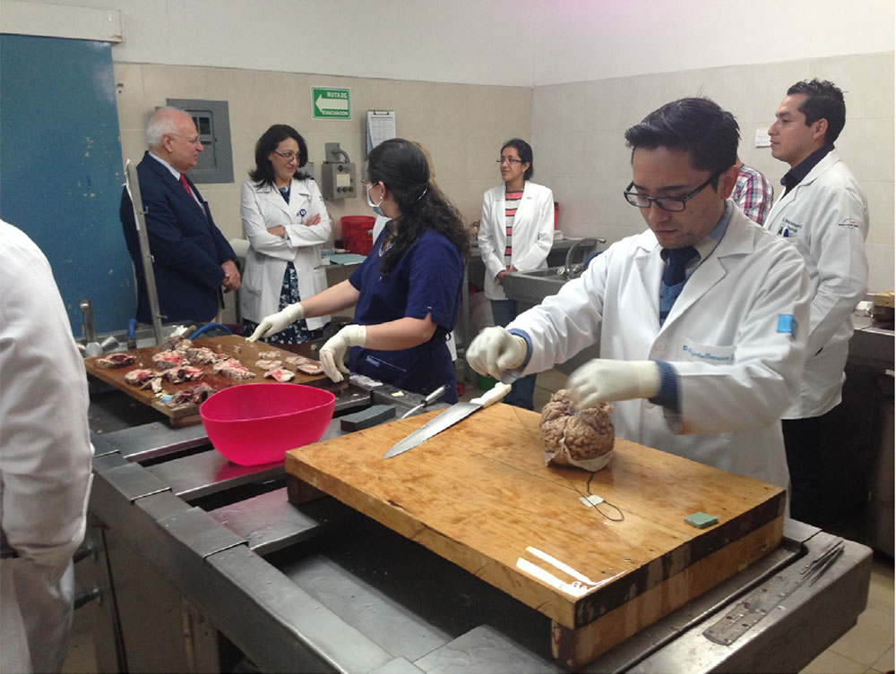 Training Centre Mexican Academy of Neurology
