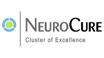 NeuroCure - Cluster of Excellence